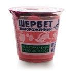 Шербет из черной смородины замороженный ТМ Петрохолод